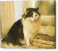 The Cat Acrylic Print by Odon Czintos