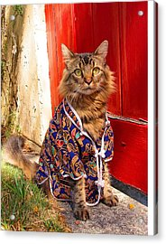 The Cat's Pajamas Acrylic Print