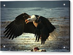 Acrylic Print featuring the digital art The Chase Is On by Carrie OBrien Sibley