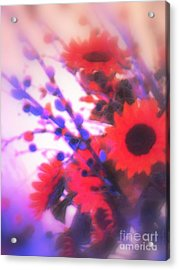 Acrylic Print featuring the photograph The Color Of Dreams by Roxy Riou