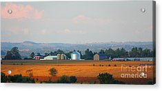 Acrylic Print featuring the photograph The Countryside by Davandra Cribbie