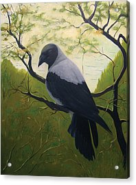Acrylic Print featuring the painting The Crow by Tone Aanderaa