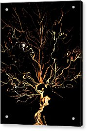 The Curious Tree Acrylic Print by Yvonne Scott