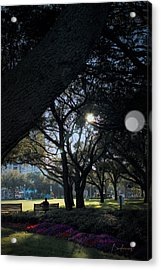 The Day's Reflection Limited Edition Bodecoarts Acrylic Print