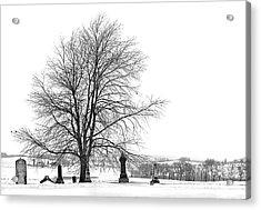 The Dead Of Winter Acrylic Print