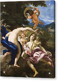 The Death Of Adonis Acrylic Print by Il Baciccio