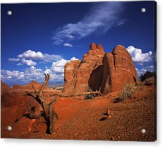 The Devils Garden In Arches National Park Acrylic Print by Daniel Chui