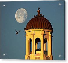 The Dome Acrylic Print by Dan Wells