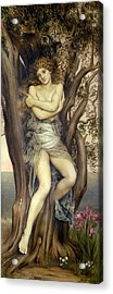 The Dryad Acrylic Print by Evelyn De Morgan