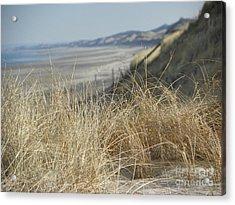 The Dunes II Acrylic Print by John Doble
