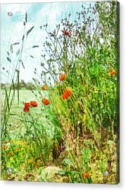 Acrylic Print featuring the digital art The Edge Of The Field by Steve Taylor