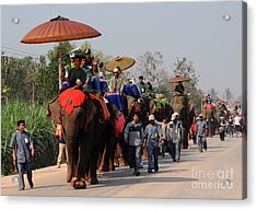Acrylic Print featuring the photograph The Elephant Parade by Vivian Christopher