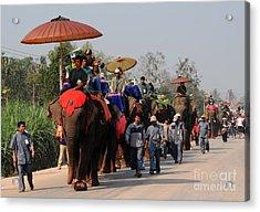 The Elephant Parade Acrylic Print by Vivian Christopher
