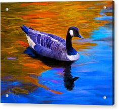 The Fall Goose Acrylic Print by Suni Roveto