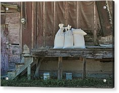 The Feed Mill Acrylic Print by Odd Jeppesen