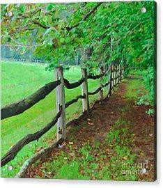 The Fence Path Acrylic Print