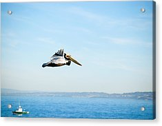 The Flight Acrylic Print