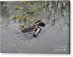 The Floating Island Acrylic Print