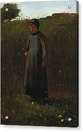 The Flowers Of The Field Acrylic Print by Winslow Homer
