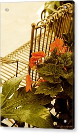 Acrylic Print featuring the photograph The Garden Bench by MaryJane Armstrong
