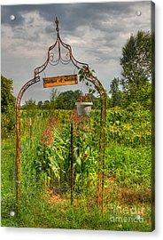 The Garden Of Weeden Acrylic Print by Robert Pearson