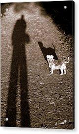 The Giants Companion Acrylic Print by Ed Smith