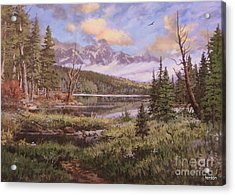 The Gore Range Acrylic Print by W  Scott Fenton
