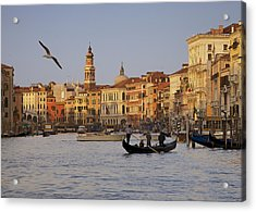 The Grand Canal Acrylic Print by Daniel Sands