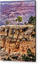 The Grand Canyon Iv Acrylic Print by Tom Prendergast