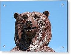 The Great Bear Acrylic Print by Alan Derber