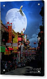 The Great White Egret Of Chinatown . 7d7172 Acrylic Print by Wingsdomain Art and Photography