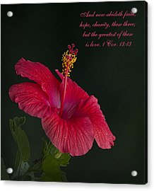 The Greatest Of These Is Love Acrylic Print by Kathy Clark