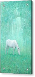 The Green Glade Acrylic Print by Steve Mitchell