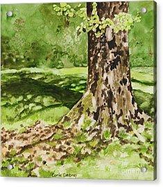The Green Grass Grew All Around Acrylic Print by Carla Dabney