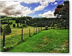 The Green Green Grass Of Home Acrylic Print by Kaye Menner