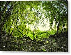 The Green Knoll Acrylic Print by Kimberleigh Ladd