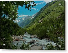 The Green Valley Acrylic Print by Olga Vlasenko
