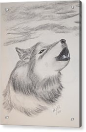 Acrylic Print featuring the drawing The Howler by Maria Urso