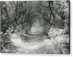 The Icknield Way Acrylic Print