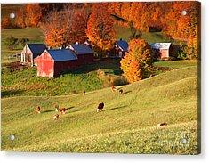 The Jenne Farm Acrylic Print by Butch Lombardi