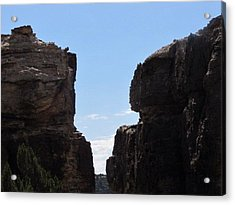 Acrylic Print featuring the photograph The Jump by Shawn Hughes