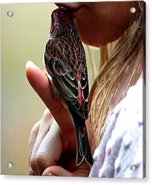 The Kiss That Saved Her Acrylic Print