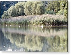 The Lake Reflection Acrylic Print by Odon Czintos