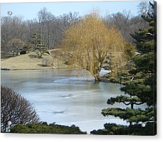 The Landscape In February Acrylic Print by Dragica Lukovic
