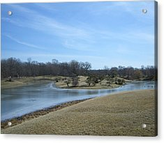 The Landscape In February Part IIi Acrylic Print by Dragica Lukovic