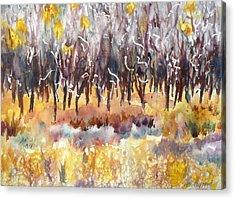 The Last Of The Aspen Leaves Acrylic Print