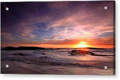 The Last Rays Acrylic Print by Paul Svensen