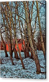 Acrylic Print featuring the photograph The Leaning by Rachel Cohen