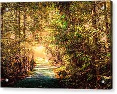 The Light Acrylic Print by Barry Jones