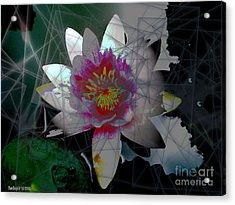 The Light From Within Acrylic Print
